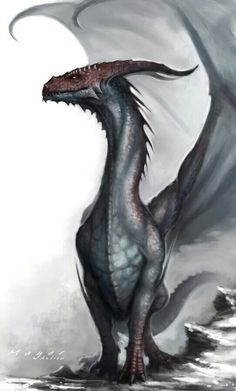 """So hypnotic, so brain melting. Makes everyone think this: """"Are dragons real or are they just a fantasy?"""""""