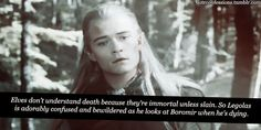 Elves don't understand death because they're immortal unless slain. So Legolas is adorably confused and bewildered as he looks at Boromir when he's dying. / the look of immense sadness on Legolas' face in this part always breaks my heart.
