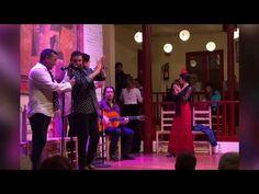 Zam's Zany Travels!: Flamenco and Tapas...perfect duo for an exhilarati...