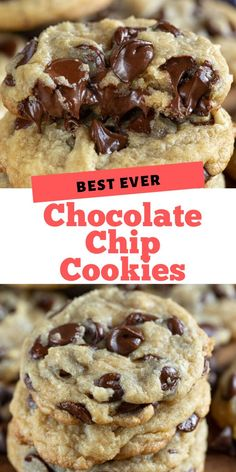 The BEST Chocolate Chip Cookie recipe is easy to make and a great base for so many other cookie recipes! The BEST Chocolate Chip Cookie recipe is easy to make and a great base for so many other cookie recipes! Basic Cookie Recipe, Basic Cookies, Easy Cookie Recipes, Sweet Recipes, Cake Recipes, Dessert Recipes, How To Bake Cookies, Easy Baking Recipes, Kitchen Recipes