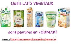 laits végétaux pauvres en FODMAP