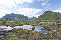Lofoten island by Ari Niippa