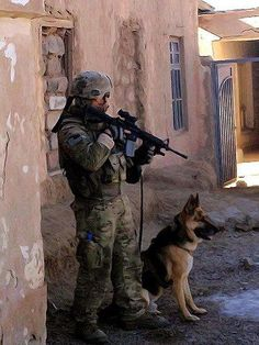 Tyler and Kahn back in the day in action Military Working Dogs, Military Dogs, Police Dogs, Gi Joe, Animal Heros, German Shepherd Dogs, German Shepherds, Work With Animals, War Dogs