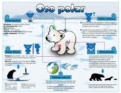 Aprendo en la web: Infografía en el aula
