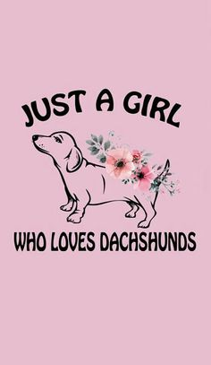 Dachshund Puppies Acquire great recommendations on dachshunds. They are accessible for you on our web site. Dachshund Breed, Dachshund Funny, Mini Dachshund, Daschund, Dachshund Quotes, Dapple Dachshund, Hamsters, Clever Dog, Weenie Dogs