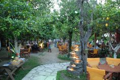 Lemon Garden. Our favourite restaurant in Corfu.
