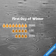 First Day of Winter - Essential Oil Diffuser Blend Essential Oils Room Spray, Essential Oils Guide, Essential Oil Perfume, Essential Oil Diffuser Blends, Doterra Essential Oils, Yl Oils, Terra Oils, Aromatherapy Oils, Diffuser Recipes