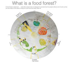 Food Forest Wheel w Text Beacon Food, Permaculture, A Food, The Good Place, Signs, Shop Signs, Sign, Dishes
