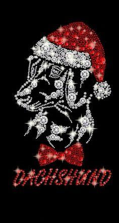 Christmas dachshund Mini Dachshund, Daschund, Dachshund Puppies, Christmas Animals, Christmas Dog, Christmas Dachshund, Weenie Dogs, Doggies, Knitted Heart Pattern