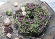 Kranz Terrarium, Cabbage, Vegetables, Food, Home Decor, Third Child, Crown Cake, Terrariums, Decoration Home
