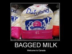 Get a Bagged Milk funny picture from Demotivational. You can get dozens of other funny pictures from Demotivational. Here are some samples of funny words: bagged, milk Canadian Things, I Am Canadian, Canadian Food, Canadian Humour, Milk In A Bag, Contests Canada, Meanwhile In Canada, Canada Eh, Canada Funny