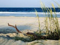 """Tybee Island named """"8 US islands where summer lasts all year long"""" by Fox News."""
