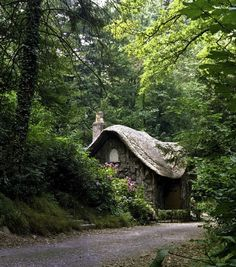 Stone cottage...love to daydream about places like this in the woods.  :-)  As I child, I might have been scared.  But now, I can see its beauty!