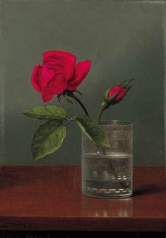 MARTIN JOHNSON HEADE RED ROSE AND BUD IN A TUMBLER ON A SHINY TABLE