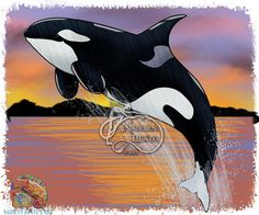Orca Daily Creature Print by NadilynBeatosArt on Etsy