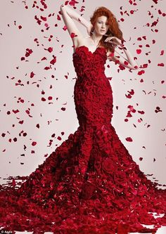 Red rose dress.