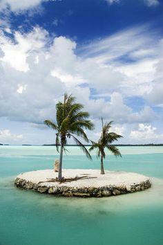 Bora Bora, two trees