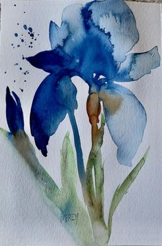 Blue Iris Floral 0266 original fine art by Michelina Frey Watercolor Paintings For Beginners, Watercolor Pictures, Watercolor Art Lessons, Iris Painting, Painting & Drawing, Painting Flowers, Flower Water Color Painting, Abstract Watercolor, Watercolor Flowers