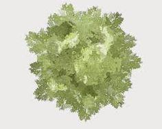 """Résultat de recherche d'images pour """"tree plan design promarker"""