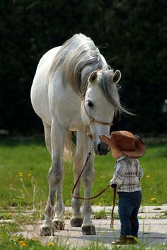 Horse looking so sweetly at little kid with cowboy hat.