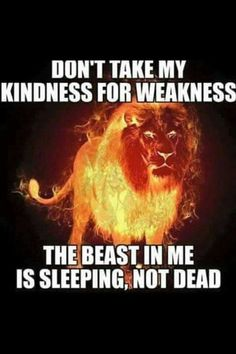 Don't take my kindness for weakness. The beast in me is sleeping, not dead. Lion Quotes, Wolf Quotes, Anger Quotes, Animal Quotes, Leo Traits, Motivational Quotes, Inspirational Quotes, Meaningful Quotes, Rumi Quotes