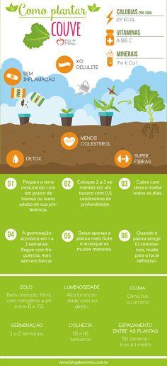 Como plantar couve e