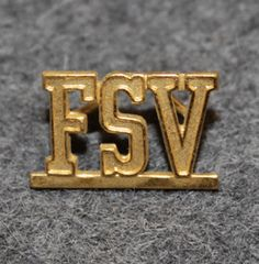 FSV, Förenade Svenska Vakt Aktiebolag, security company. Uniform Insignia, Security Companies