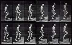 Eadweard Muybridge/man walking up stairs Motion Photography, History Of Photography, Marcel Duchamp, Walking Stairs, How To Draw Stairs, Performance Artistique, Marketing Viral, Blog Art, Art Et Design