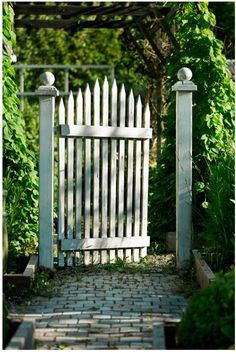 white picket...classic gate!