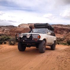 """@motostew4x4association's photo: """"Do you take pets off road with you?"""""""