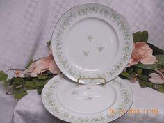Johann Haviland China Dinnerware England Forever Spring. set 2 dinner Plate #johannhaviland