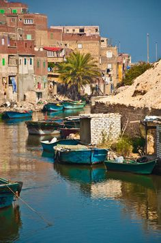 El Max, Fishermen village - Alexandria, Egypt Old Egypt, Cairo Egypt, Ancient Egypt, Luxor, Places Around The World, Around The Worlds, Naher Osten, Life In Egypt, Alexandria Egypt