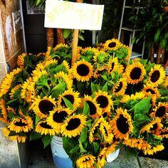 LA Fashion District: Summer Flowers & Fresh Juice at the LA Flower District