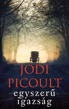 Egy békés Pennsylvania állambeli amis kisvárosban halott újszülöttre bukkannak egy elhagyatott istállóban. A rendőrségi nyomozás során egyéb szörnyű titkokra is fény derül, és a közösség élete pillanatok alatt pokollá változik. A bizonyítékok a tizennyolc éves és hajadon Katie Fisher ellen szólnak, aki látszólag titokban szülte meg gyermekét, majd megölte az ártatlant. Jodi Picoult, Movie Posters, Movies, Film Poster, Films, Movie, Film, Movie Theater, Film Posters