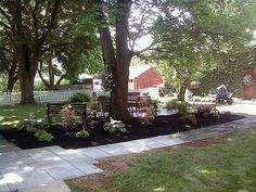 Just installed this blue stone sidewalk & patio along with shade plants