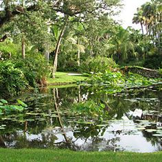 McKee Botanical Garden, Vero Beach, Florida