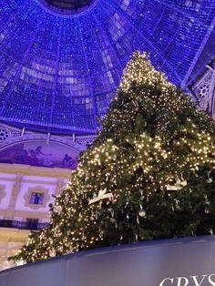 Galleria Vittorio Emanuele, illuminata di blu