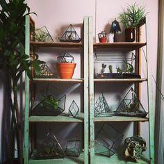 Prism succulent planters ∆