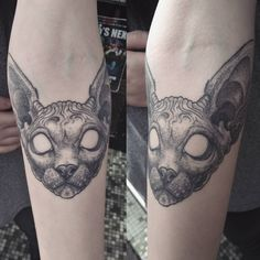 Healed shot of a sphinx cat tattoo by Alex M Krofchak. Dotshaded. Blackwork. Dotwork.