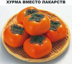 """Хурма вместо лекарств. Se dice que: """"deja que tu alimento sea tu medicina"""""""