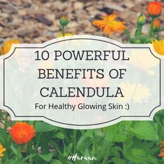 Calendula Benefits, Glowing Skin, Healthy, Plants, Flora, Planters, Health