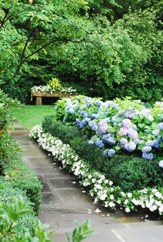 The most beautiful place in your garden, border plants, perennial, plants, flowers, walkway, small lawn, backyard