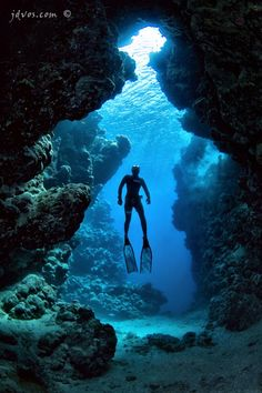 WAteR. I scuba dive... I need back under the water!