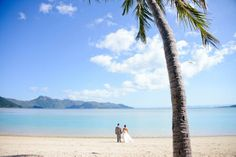 Romantic wedding escape on Hayman Island on the MW blog // Photo byThe Hayman Gallery Photography. See more at http://www.modernwedding.com.au/real-wedding/a-romantic-wedding-escape-on-hayman-island/