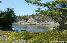 Smøla - Norway Beautiful Norway, River, Future, Outdoor, Outdoors, Future Tense, Outdoor Games, The Great Outdoors, Rivers