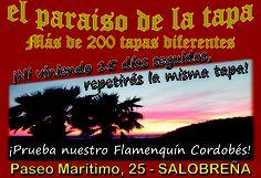 EL PARAISO DE LA TAPA ¡¡DALE LA VUELTA AL TICKET!! del DIA% en Salobreña.