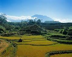 Di Four Seasons Resort Bali at Jimbaran Bay, mengalami resor mewah otentik Bali terletak tepat di pantai lautan. Tradisional, abadi dan benar-benar romantis, persembunyian legendaris terdaftar di antara Travel + Leisure 500 Hotel Best di Dunia 2013.