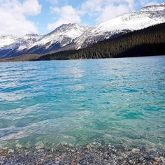 Look at that water! Banff National Park, National Parks, Different Perspectives, Canadian Rockies, Rocky Mountains, Mount Rainier, Places To See, Travel Tips, Amazing