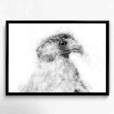Black and White Eagle Print Eagle Artwork Eagle art by ShakArts