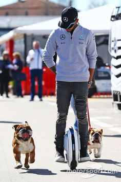 Lewis Hamilton, Mercedes AMG on a hoverboard in the paddock with his dogs Roscoe and Coco at Barcelona March testing High-Res Professional Motorsports Photography F1 Lewis Hamilton, Lewis Hamilton Formula 1, Mercedes Amg, Bulldogs Ingles, F1 S, Still I Rise, Nico Rosberg, British Bulldog, Its A Mans World